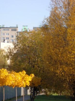 Jesień 2011